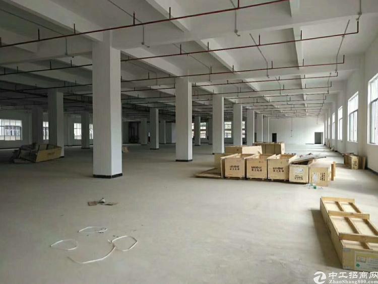 华南城附近1500平方米带装修水电齐全招租(可分租)-图3