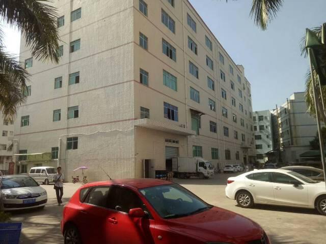 出租龙岗坪地新出标准一楼1300平米