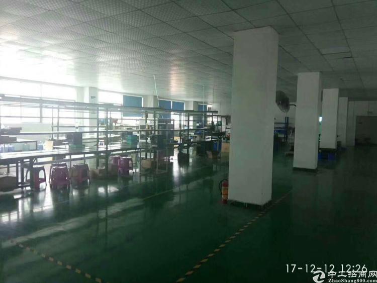 华南城附近1500平方米带装修水电齐全招租(可分租)-图5