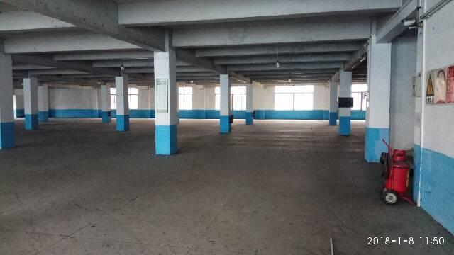 新出标准厂房12000平方1-3层,有3吨电梯-图6