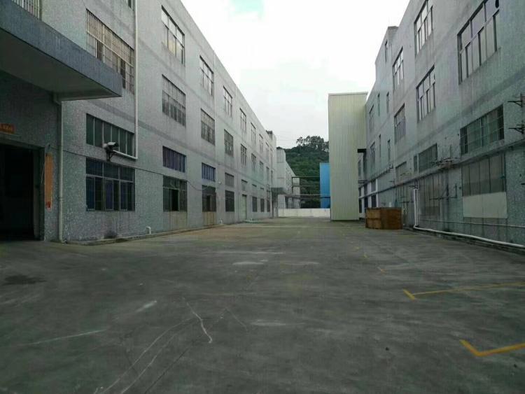 广深大道新出2800标准厂房出租