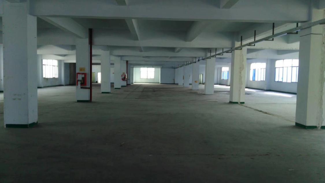 松岗大型园区新出楼上整层2000平-图3