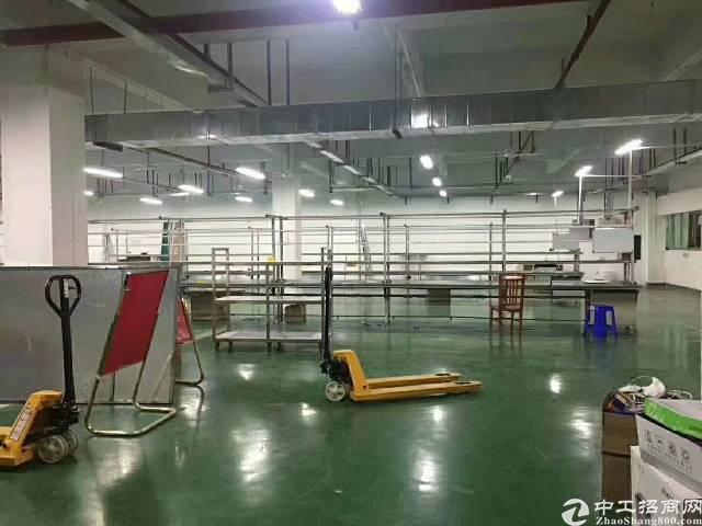 深圳坪山精装修1100㎡带地坪漆-图3