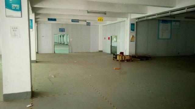 福永白石厦东区龙王庙工业区厂房招租
