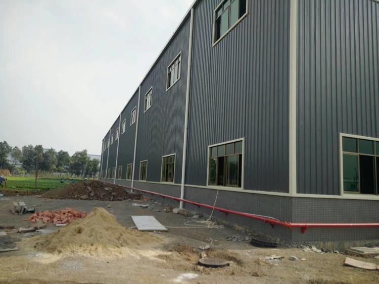 清溪镇新出单一层钢结构厂房4900平方-图2