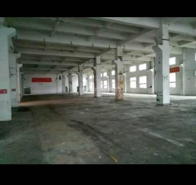 寮步一楼7米高标准厂房出租