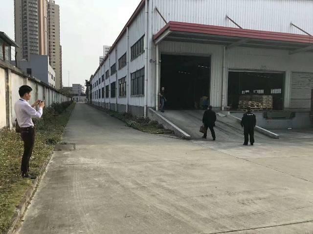 大朗镇新马莲工业园区单一层分租1000平方