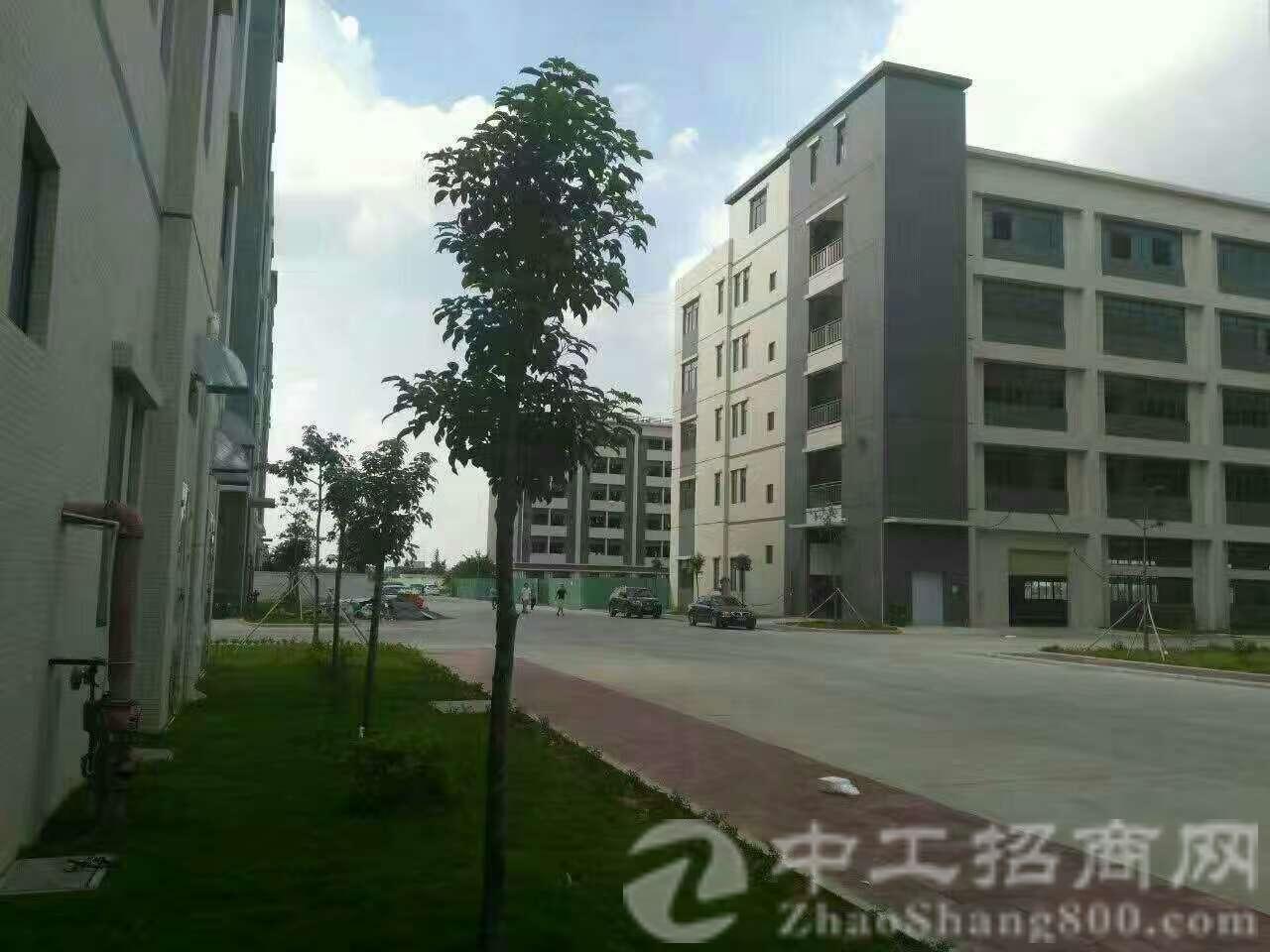 惠州市博罗县独门独院标准厂房分租二三层共4900平独立变压器-图2