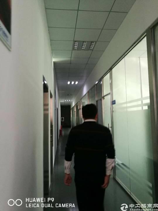 坂田华为周边带装修1900平方不用转让费厂房招租-图4