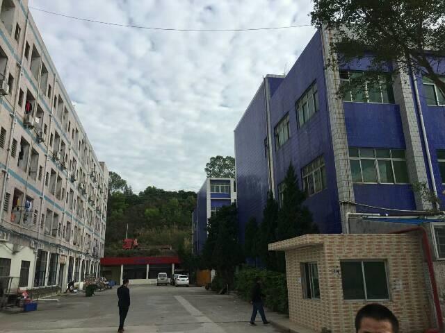 观澜福民大型工业区独栋厂房出租-图4