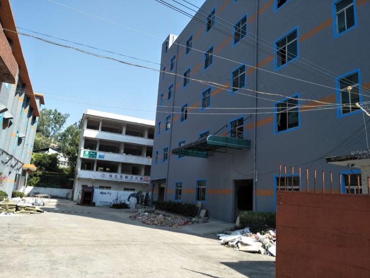 横岗六约社区全新翻新1200平方共二层单层600平方大小可分