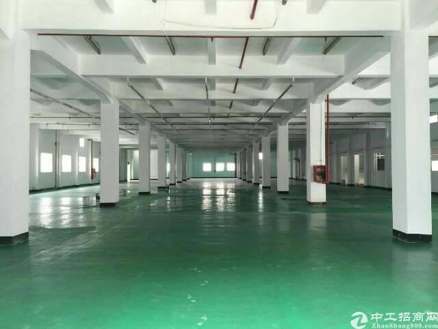 大朗镇刚出原房东独院厂房8000平方-图2