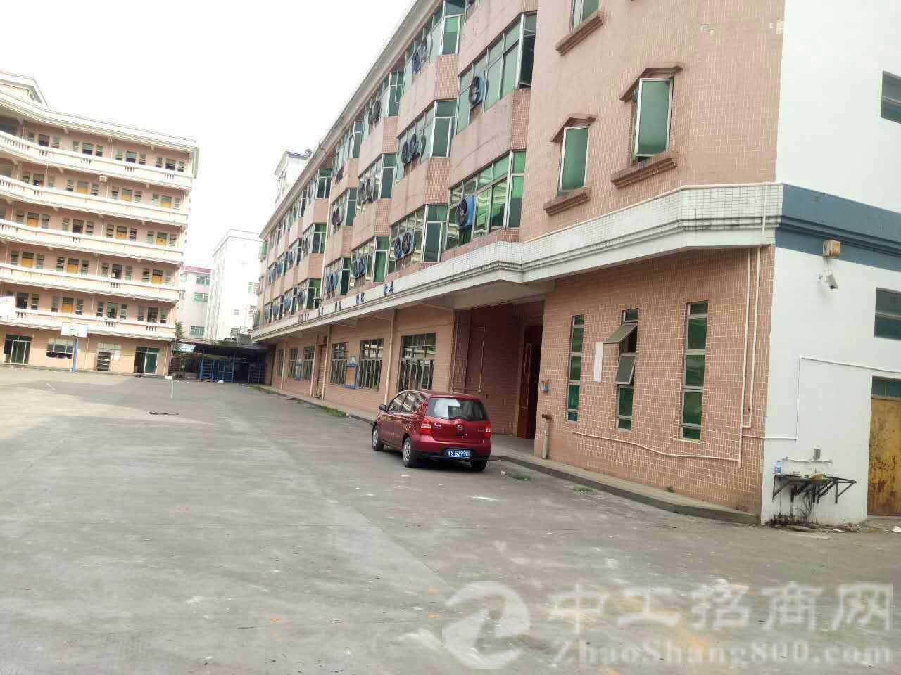 广州新出独院标准厂房5200,滴水8米可以做点小污染,抽粒