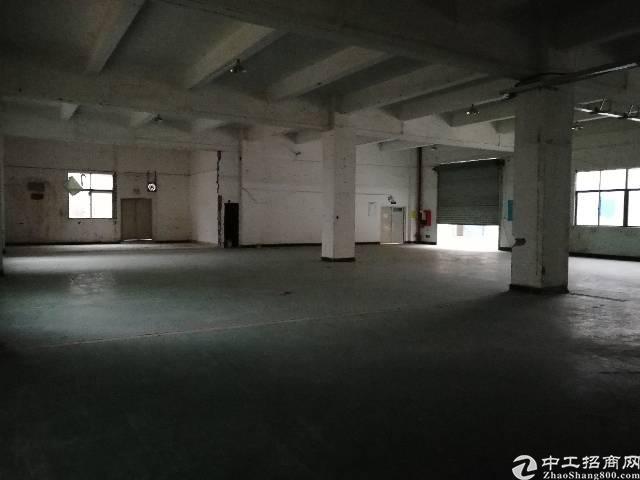 观澜福民新出一楼1500平方层高5.5米-图2