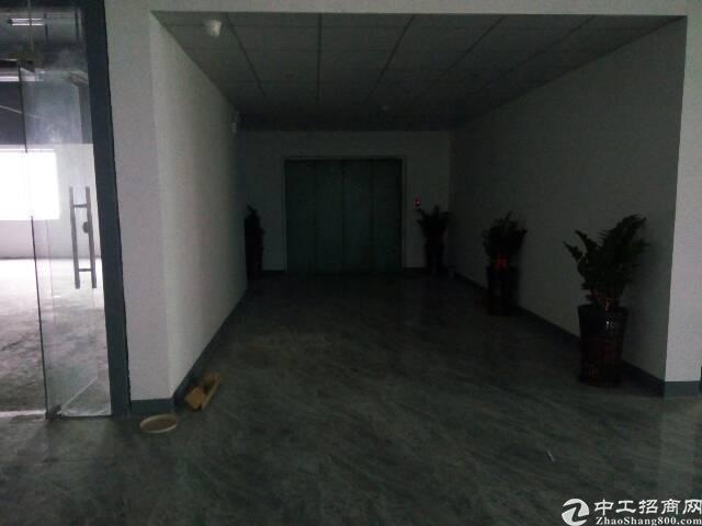 平湖华南城边上新出楼上高大上厂房2000平米对外出租