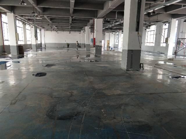 公明大型工业园带红本一二楼3680平方厂房出租-图5