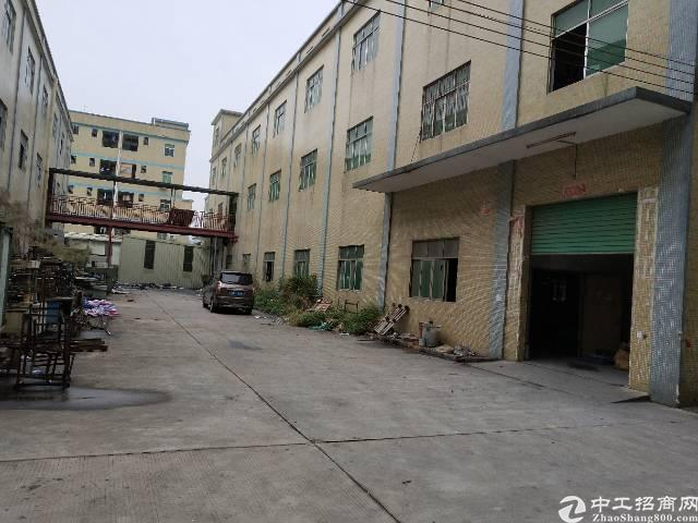 独门独院18600平标准厂房可分租