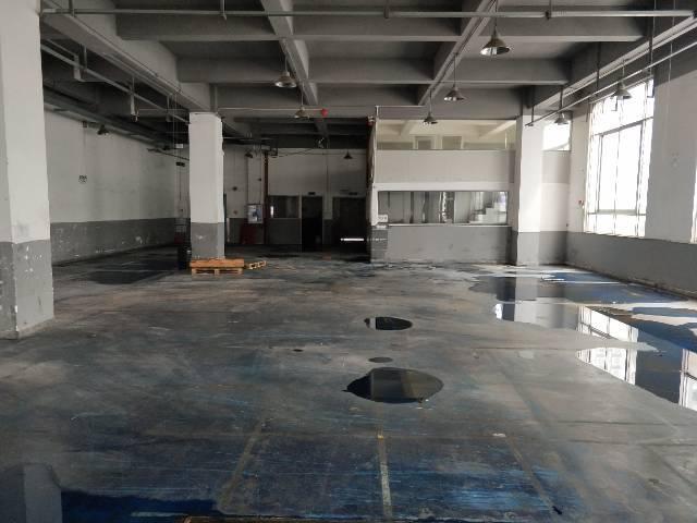 公明大型工业园带红本一二楼3680平方厂房出租-图4