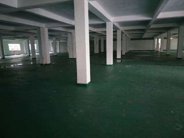 出租龙岗坪地新出标准一楼700平米,全新地坪漆装修
