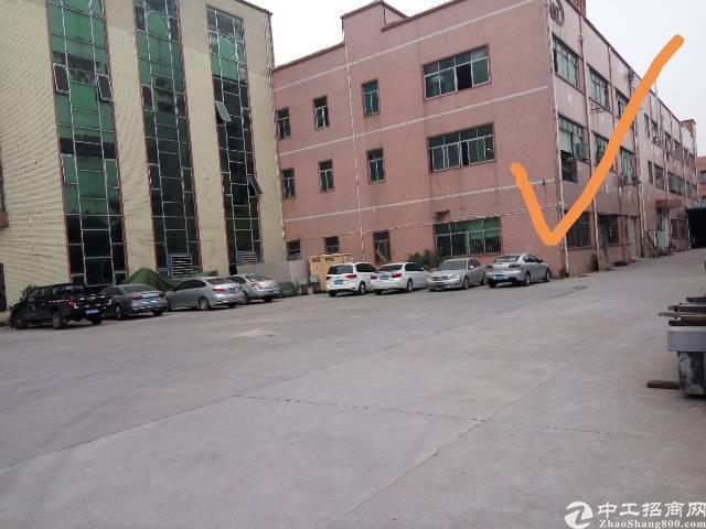 平湖独门独院带红本厂房可以分租