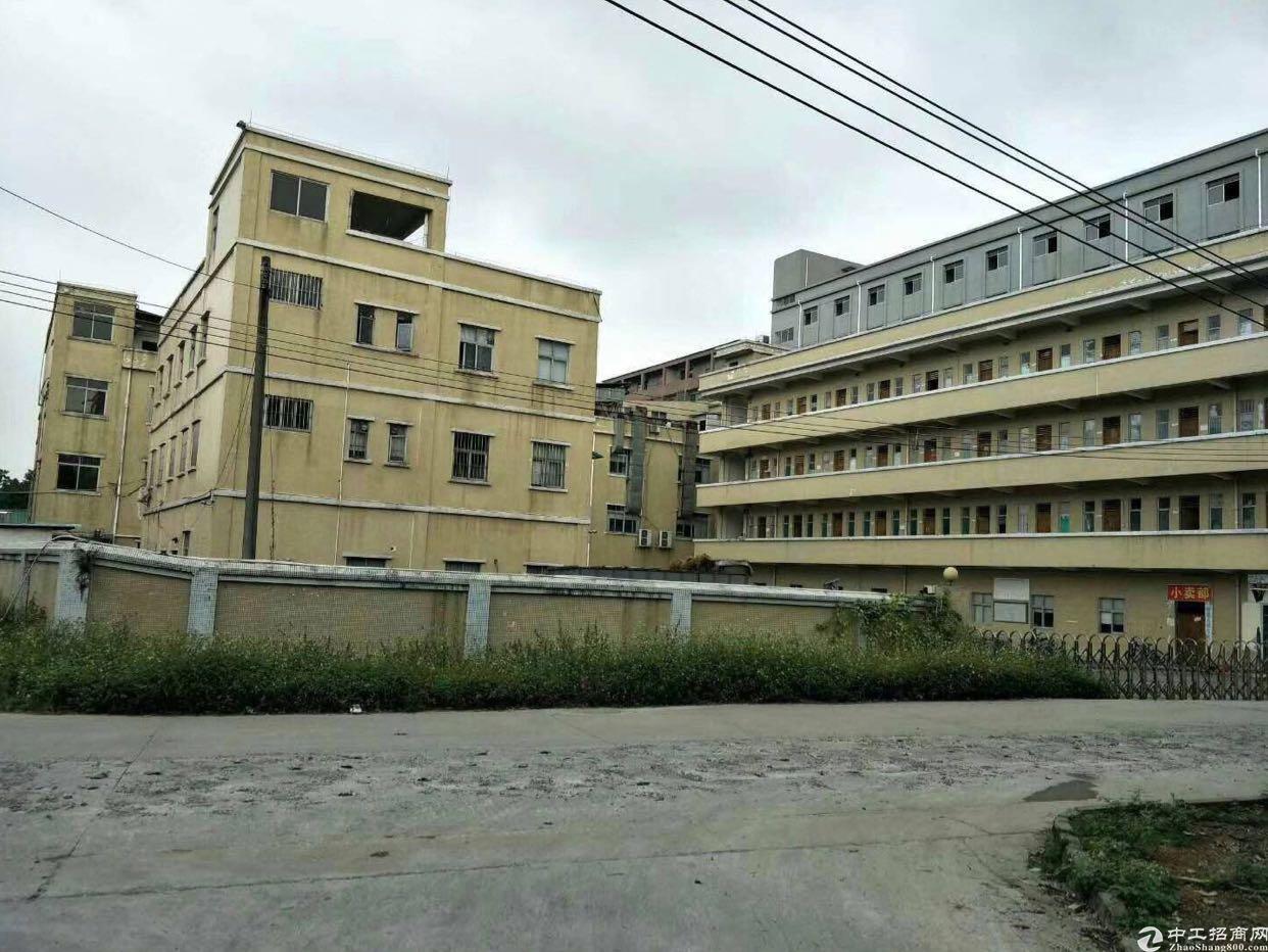 黄江独院厂房8200