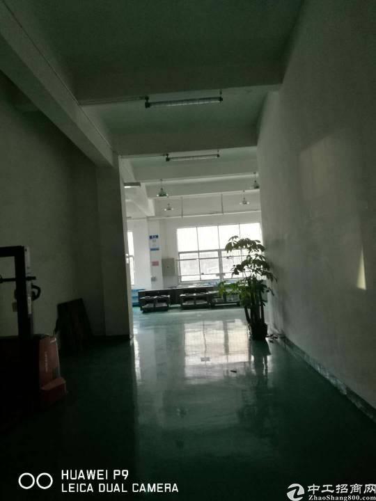 坂田华为周边带装修1900平方不用转让费厂房招租-图6