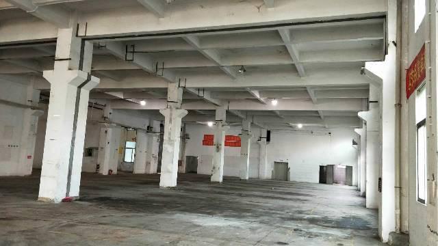 寮步镇一楼标准厂房