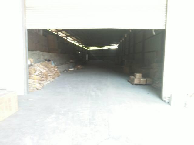 清溪镇单一层铁皮房1000平米