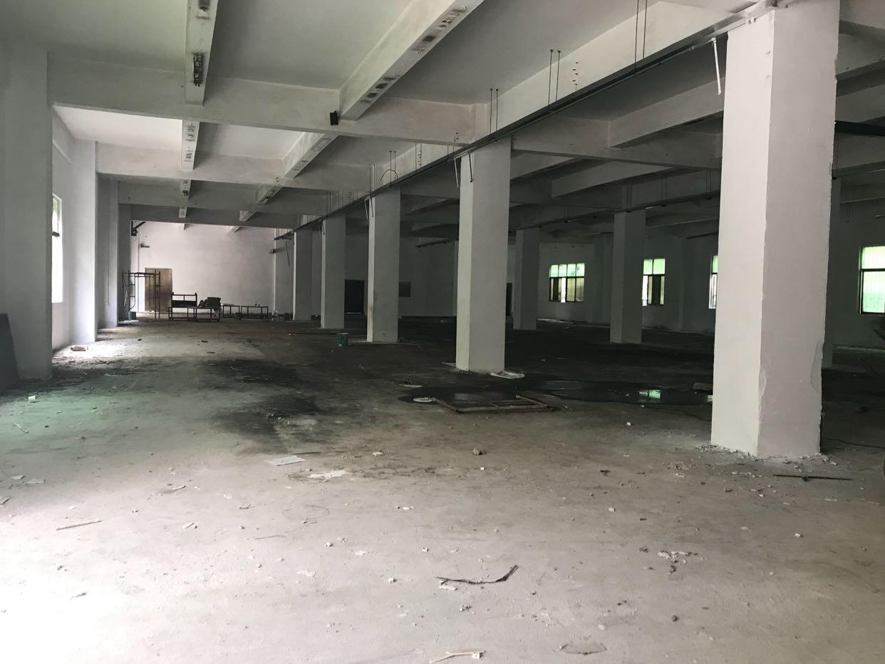 龙华汽车站附近一楼2000平厂房出租,园区高大上,空地大