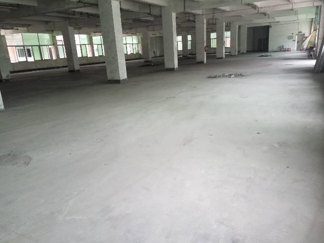 平湖主干道边可以做4s电改商业厂房招租-图3