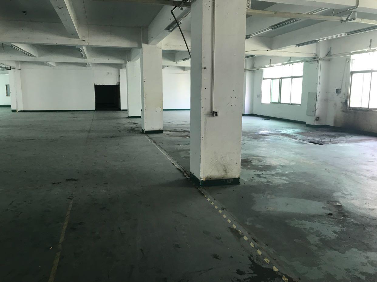 龙华汽车站附近一楼2000平厂房出租,园区高大上,空地大-图4