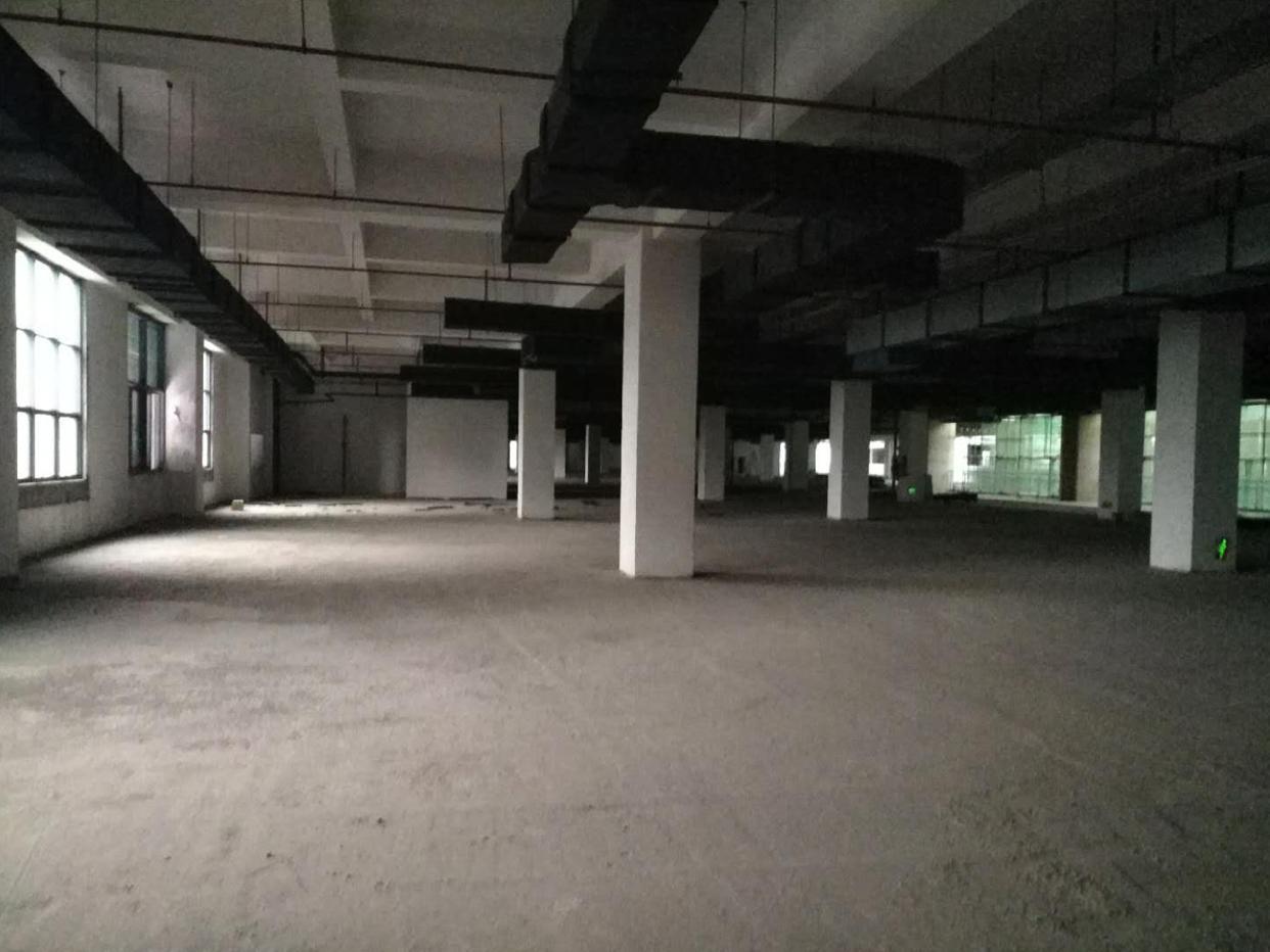布吉高速出口全新红本厂房1-7层112000平方可以分租-图3