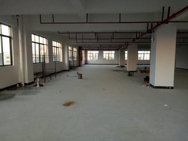 企石新出楼上整层全新厂房招租