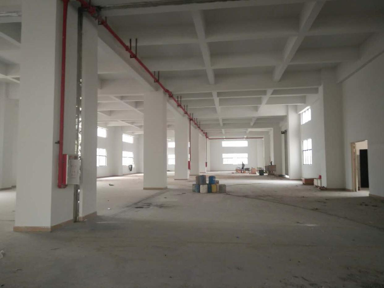 虎门新出院房东独院厂房2800平方米、宿舍1800、14元-图5