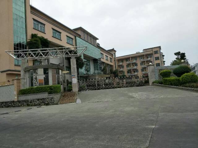 茶山花园式独门独院厂房7400平方