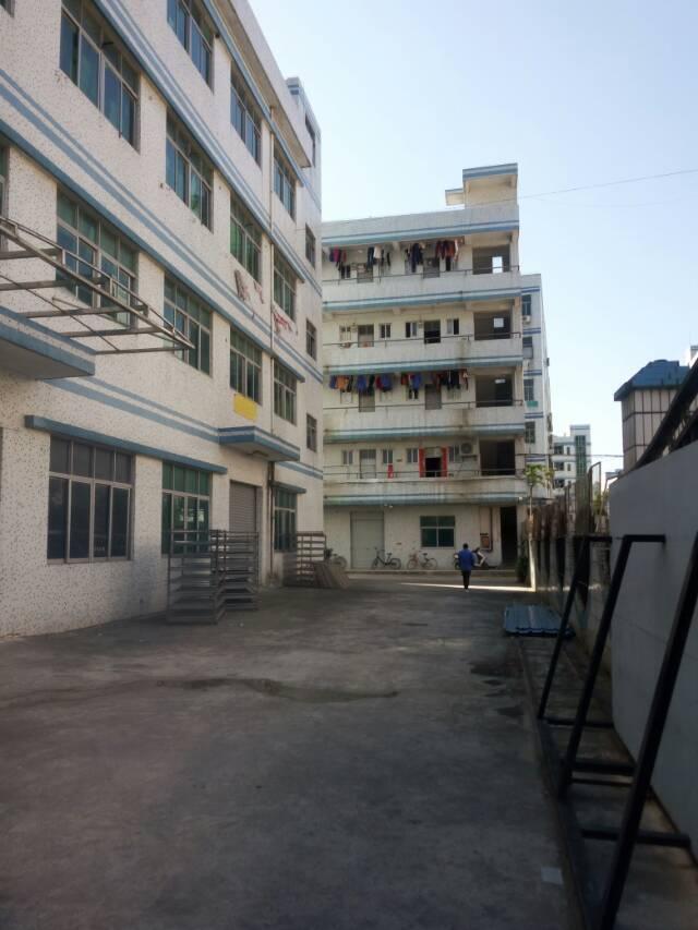 横岗西坑独门独院5300平米厂房招租