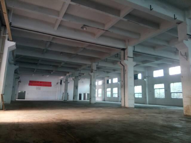 沙头红本独院厂房16000方一楼带牛脚村委直租