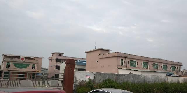 东莞市石排镇独院砖墙到顶原房东单一层-图3