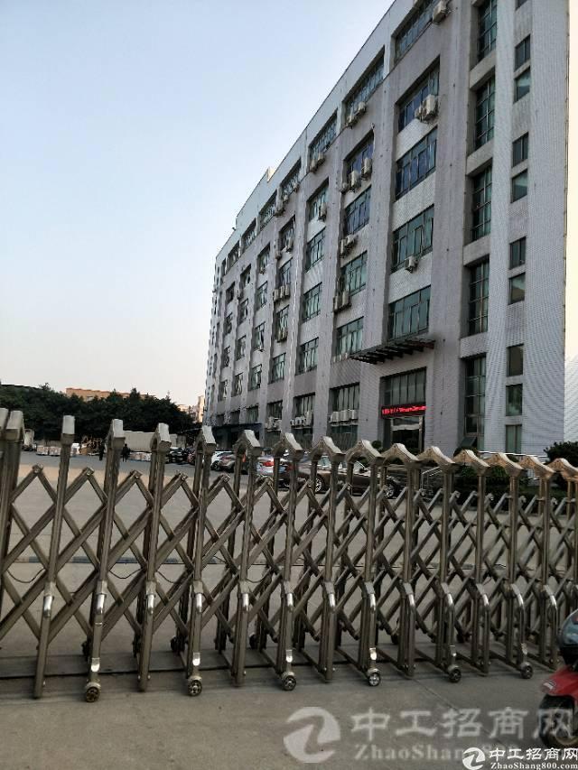 松岗燕罗派出所附近新出2楼整层3280平方米带精装修办公室