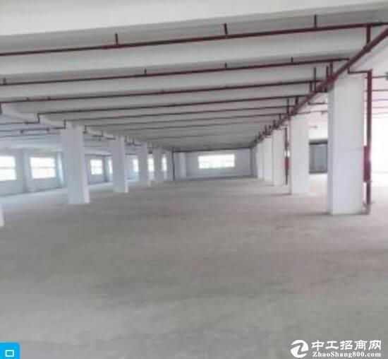 龙岗南通道精装修厂房2300平方