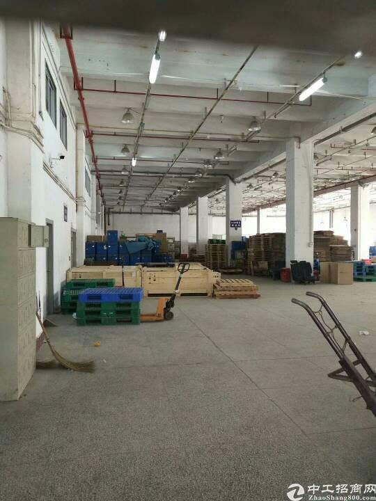 布吉坂田新出一楼带卸货平台2600平方厂房-图7