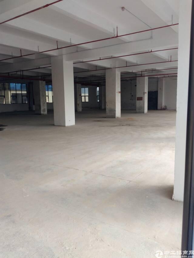 中浩工业区一楼物业招租
