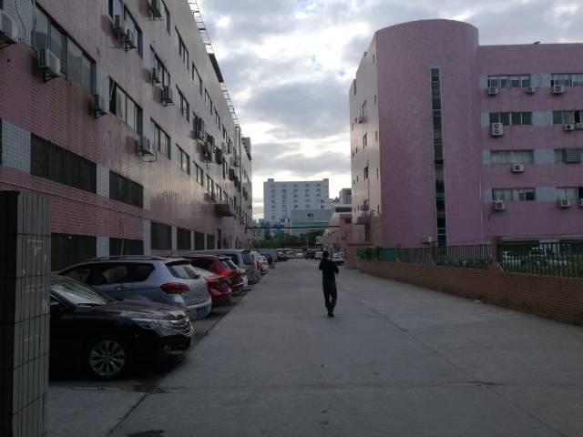 沙井沙三松福大道附近新出楼上2000平厂房出租-图2