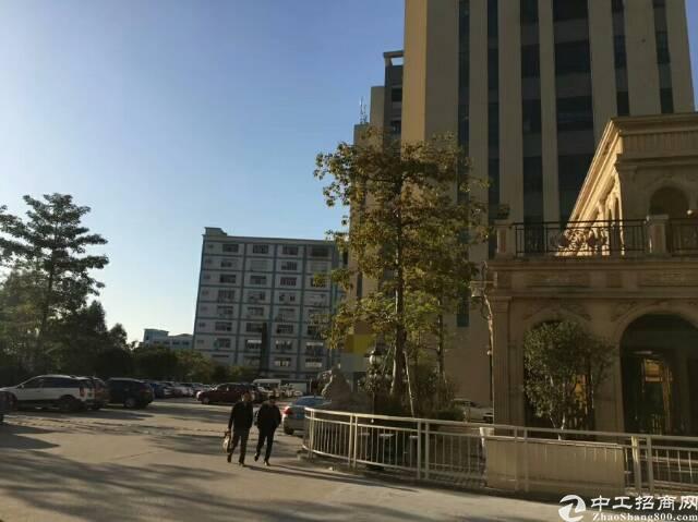 松岗江边花园式厂房楼上2700㎡招租-图3