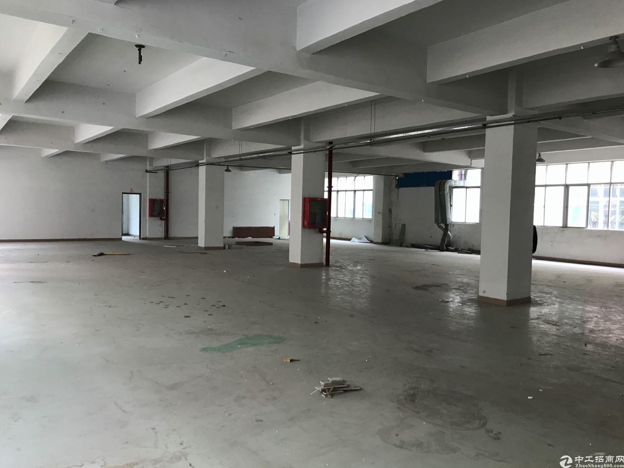 龙岗地铁口6500平1-4层独院出租