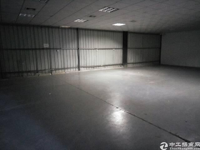 横沥新出单一层厂房1000平方-图2