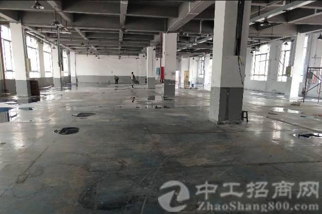 公明镇中心龙大高速出口附近一楼二楼每层1840平方厂房-图6