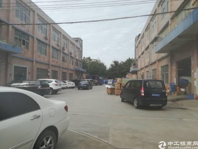 松岗大田洋新出一楼800平厂房有红本无公摊水电齐全