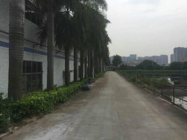 蓝光高速出口独门独院滴水9米物流园招租15000㎡-图2