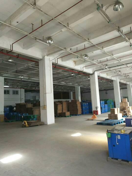布吉坂田新出一楼带卸货平台2600平方厂房-图3